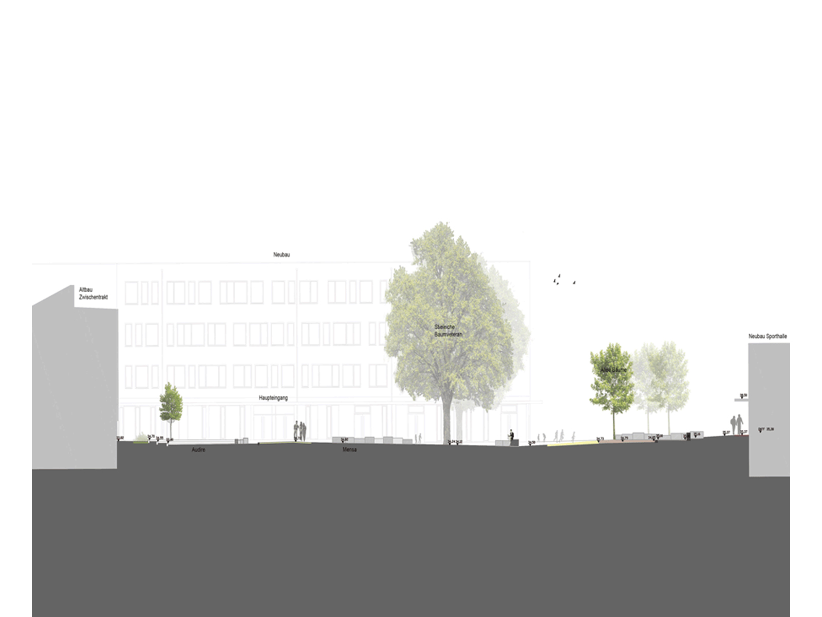 Schnitt-Entwurf-Kita-Schulhöfe-Berlin-Landschaftarchitekten-Armbruster