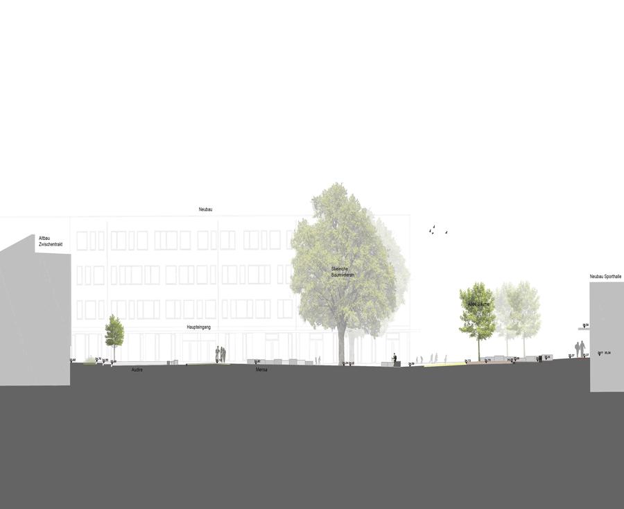 Neueplanung Außenanlagen Montessori Schule in Potsdam, Agora